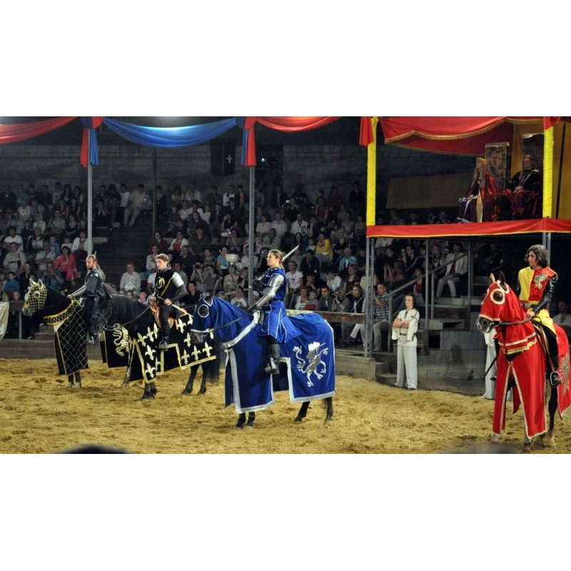 Рыцарский турнир в Испании: почувствуйте себя в средневековье - фото 4 - 001.by