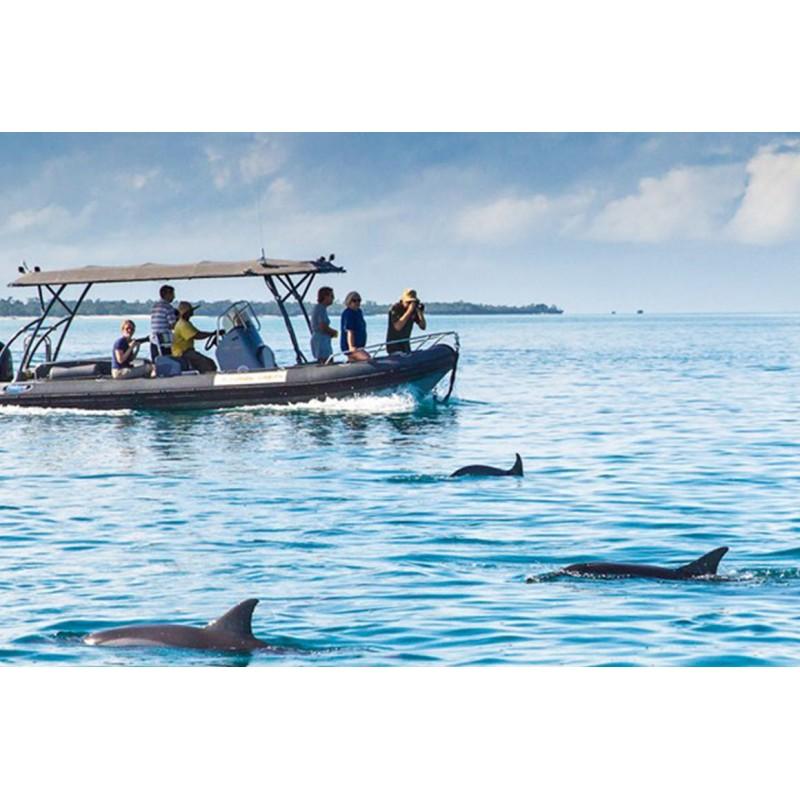 В гости к дельфинам и Лес Джозани