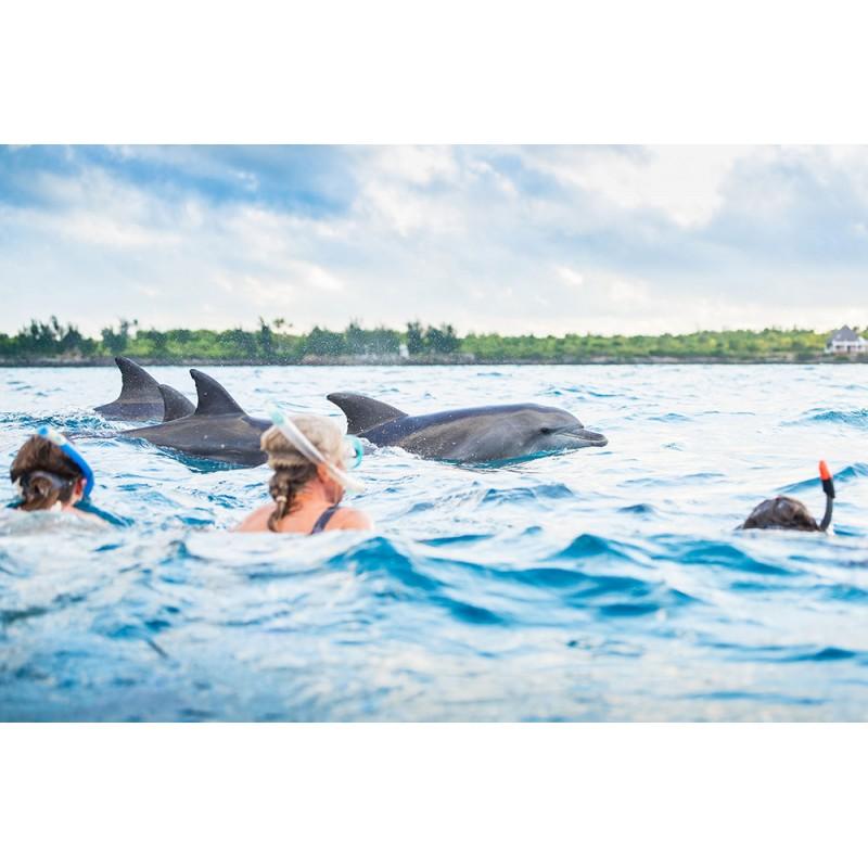 В гости к дельфинам и Лес Джозани  - фото 4 - 001.by