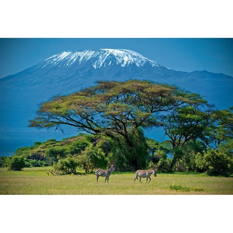 Сафари на материковую Танзанию - фото 3 - 001.by