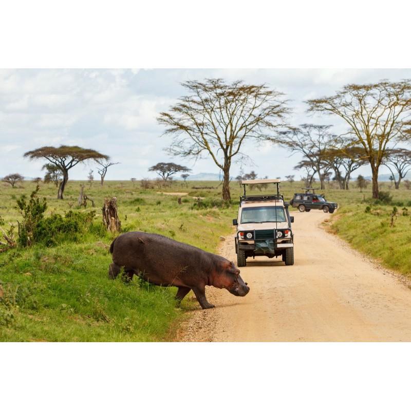 Сафари на материковую Танзанию - фото 4 - 001.by