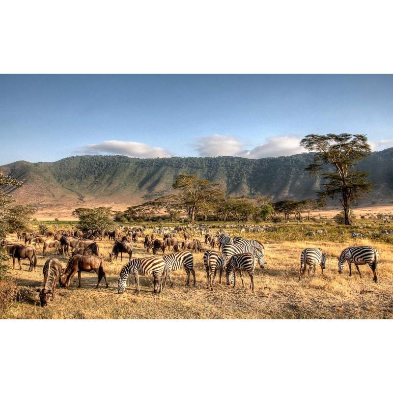 О Танзании - фото 2 - 001.by