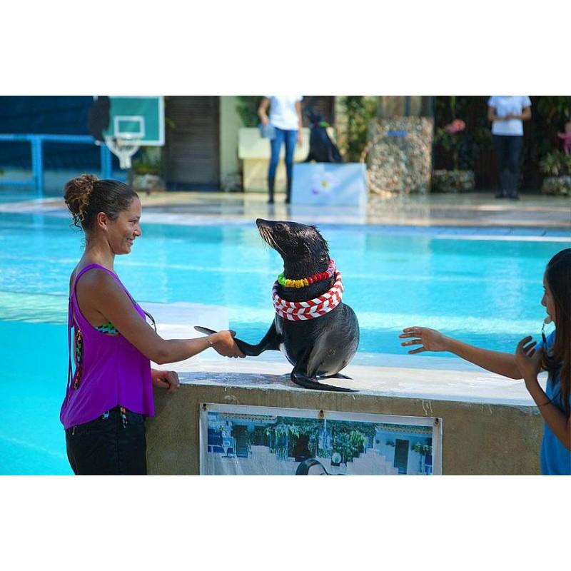 Тигровый зоопарк и аквариум на Самуи - фото 4 - 001.by