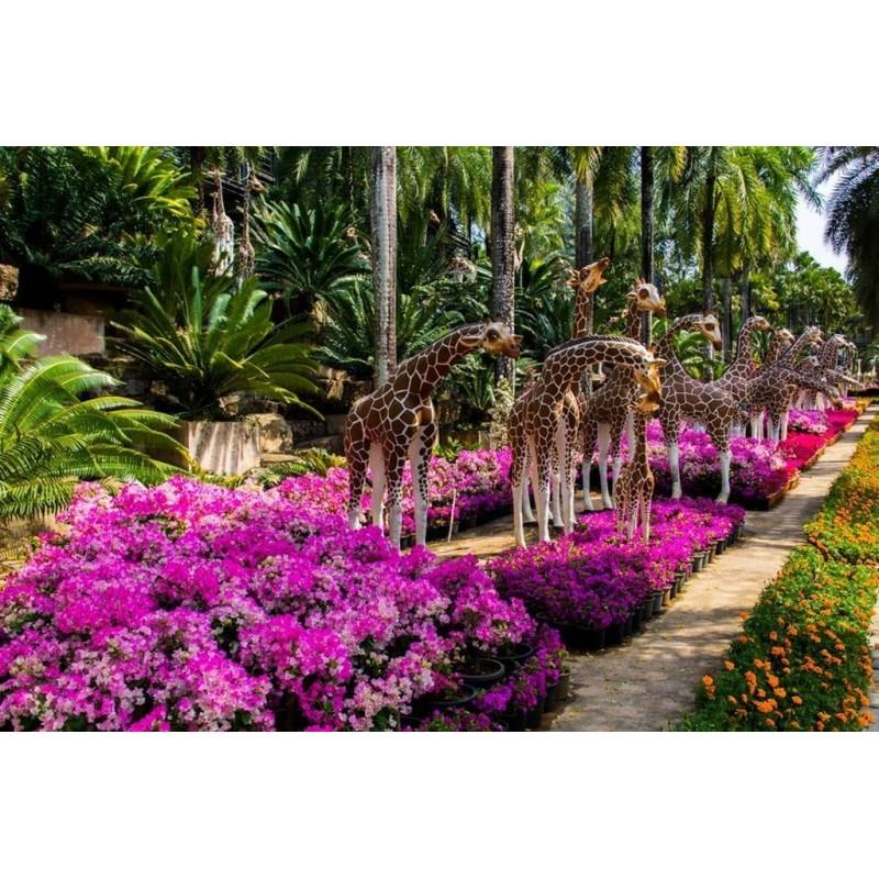 """Тропический сад """"Нонг Нуч"""" в Паттайе - фото 3 - 001.by"""