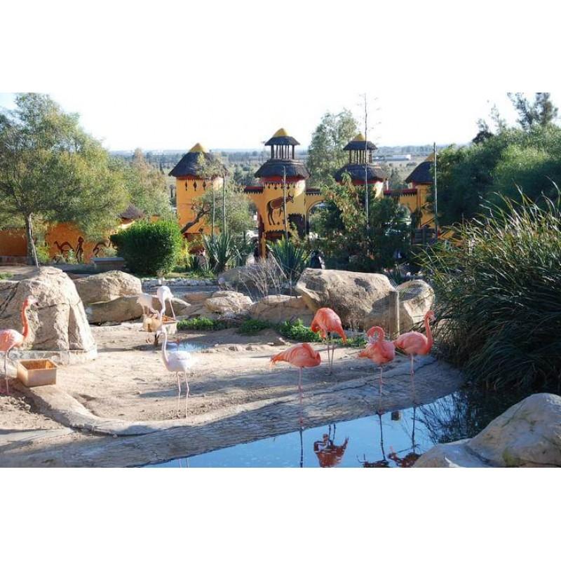 Сафари в парке Фригия