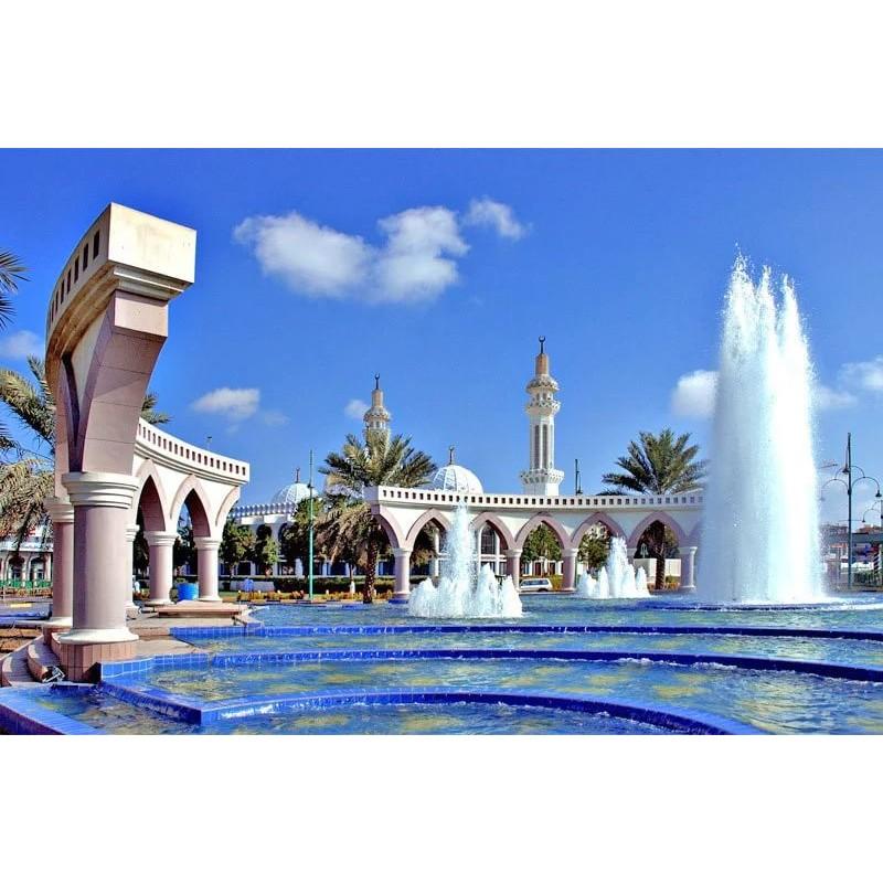 Виза в ОАЭ - фото 1 - 001.by