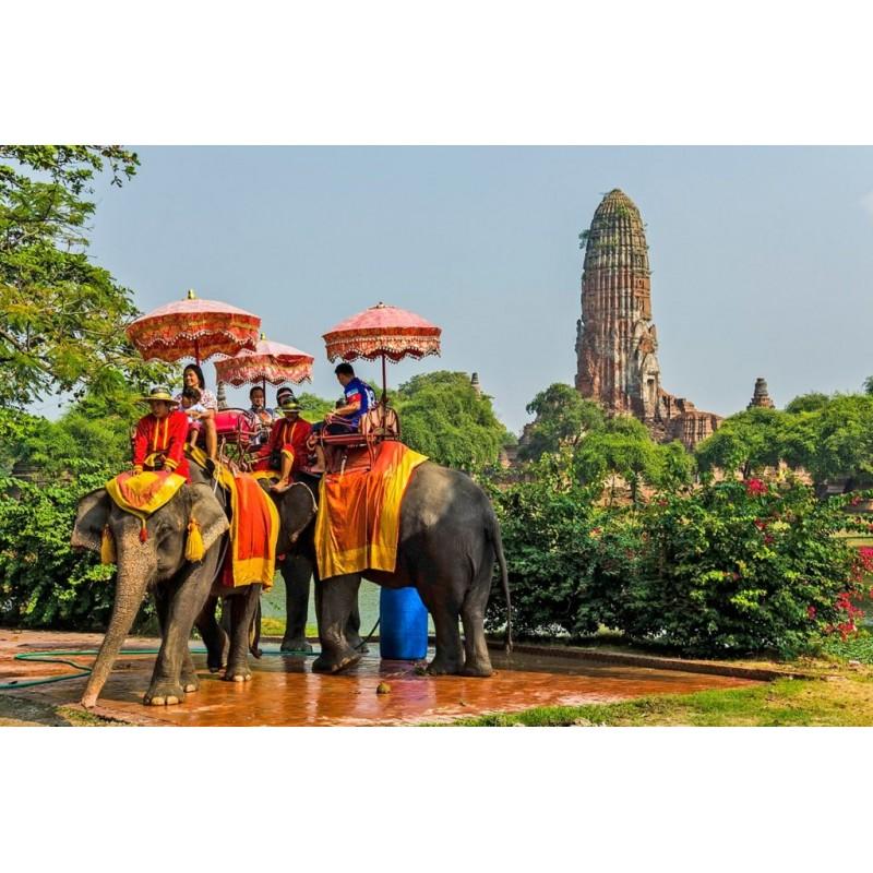 Экскурсия в Дак Лак: край слонов, водопадов и кофе - фото 4 - 001.by
