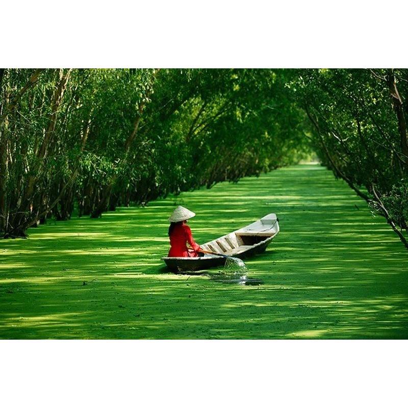 Групповой тур во Вьетнам 7 экскурсий + отдых на море - фото 2 - 001.by