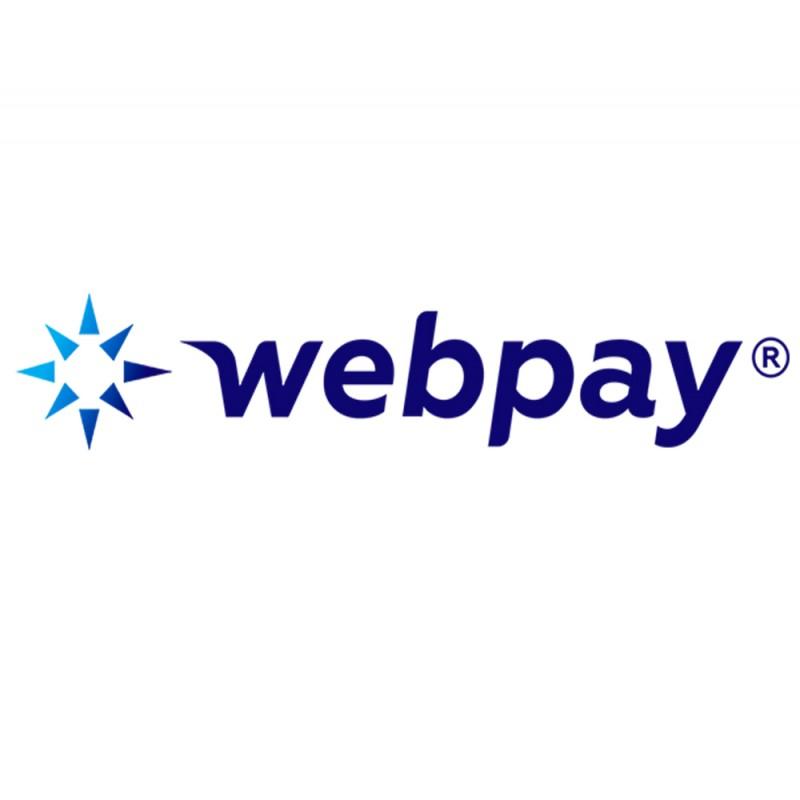 Особенности оплаты онлайн через WEBPAY™ - фото 3 - 001.by
